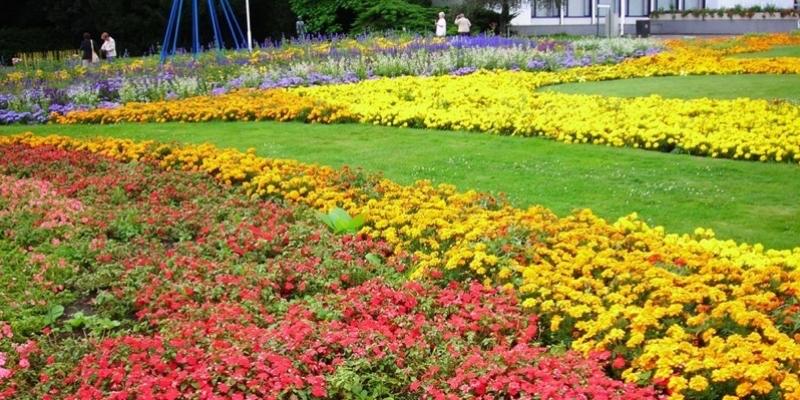 ega-Garten-800×400